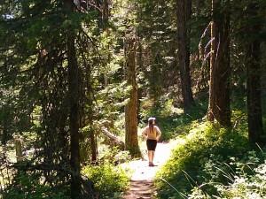 Kwonder Forest