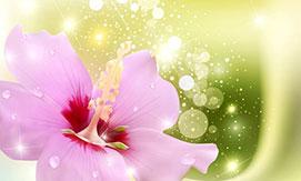 Flower Sparkles Purple 12866883 S Xtem