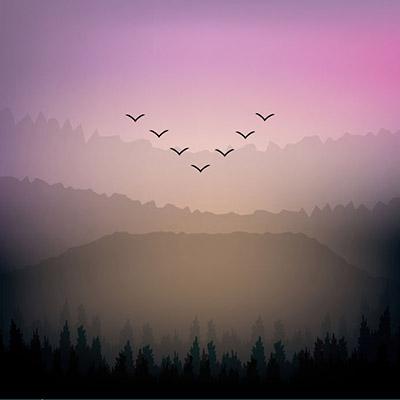 Birds Mountains 53576372 S