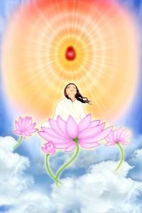 New Meditation Photo
