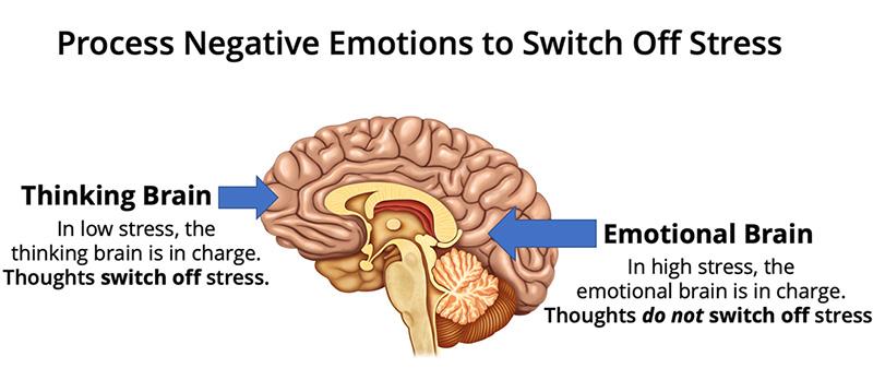 Process Negative Emotions