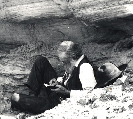 John Muir took copious notes in his field journals that are preserved and made available for study at the University of the Pacific. University of the Pacific, © 1984 Muir-Hanna Trust, Author provided